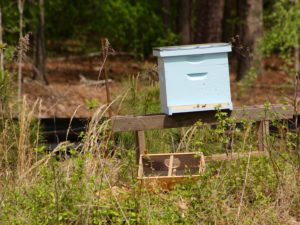 Picture of a light blue Bee hive